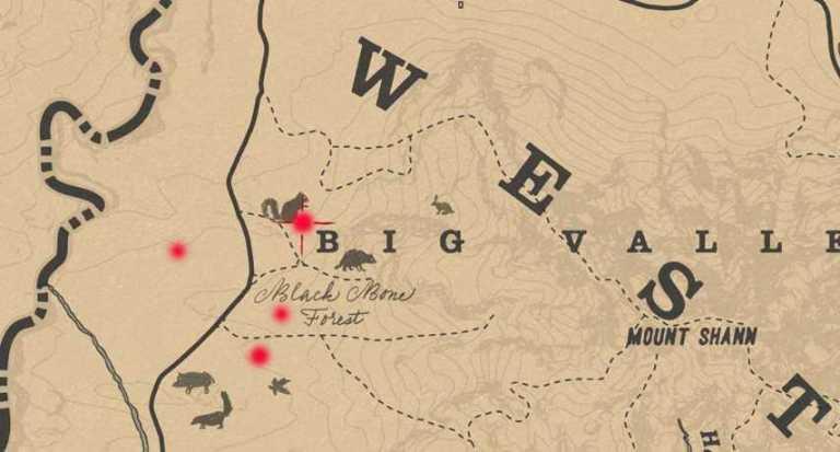 карта расположения тайниковЧерного костяного леса вRed Dead Online