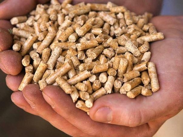 Топливные гранулы (пеллеты)
