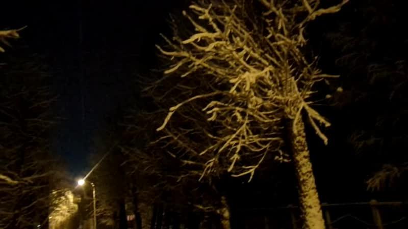 Новая школьная аллея микрорайона Лоста в сказочно-снежном убранстве.