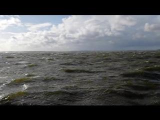 Шторм 12.09.2018 г.Высоцк ,порывы ветра до 26-28 м/с