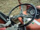 Dog driving a Tractor