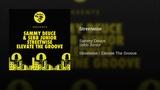 Sammy Deuce &amp Sebb Junior - Streetwise (Original Mix Audio)