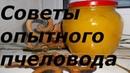 Советы опытного пчеловода В гостях у Анатолия Андреевича