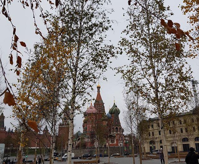 Старый Добр | Санкт-Петербург