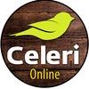 Celeri Online фото на холсте Стерлитамак