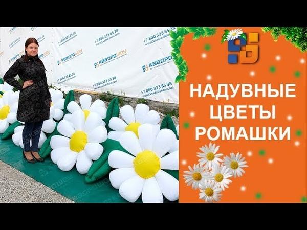 Пневмогирляда Ромашка - надувные цветы