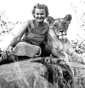 📖20 января 1910 года родилась Джой Адамсон – натуралист, писательница, художница, защитница живой природы 🐆