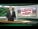 9 11 Warum ignorieren Medien und Politik anerkannte physikalische Gesetze