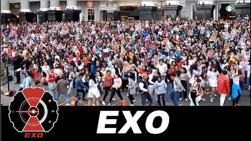 EVERYONE´S reaction to EXO 엑소 music in PUBLIC