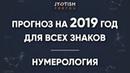 Подробный Прогноз на 2019 год для всех знаков Нумерология
