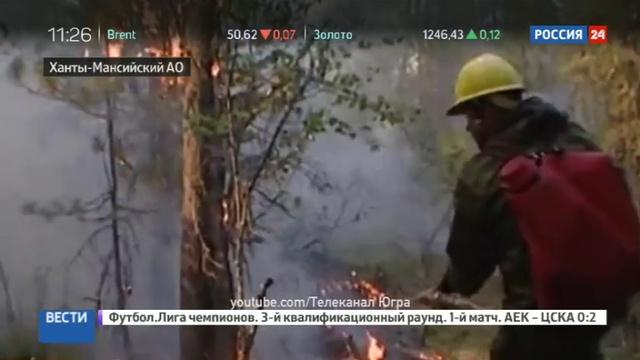 Новости на Россия 24 • В Ханты-Мансийском автономном округе введен режим ЧС из-за пожаров