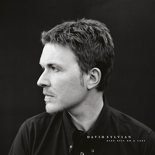 David Sylvian альбом Dead Bees On A Cake (Deluxe Edition)