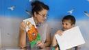 Изучаем алфавит, буква Ф. Развивающие мультики для детей