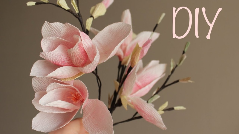 DIY Crepe paper flower Magnolia / Магнолия из гофрированной бумаги