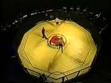 MMA World Championship in Moscow 1995 Бои без правил