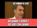 Bolsonaro Estupra Galinha Porque Ela Merece