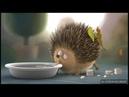 Rollin'Wild:Hedgehog