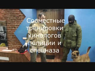 Detection dogs training k9 in russia