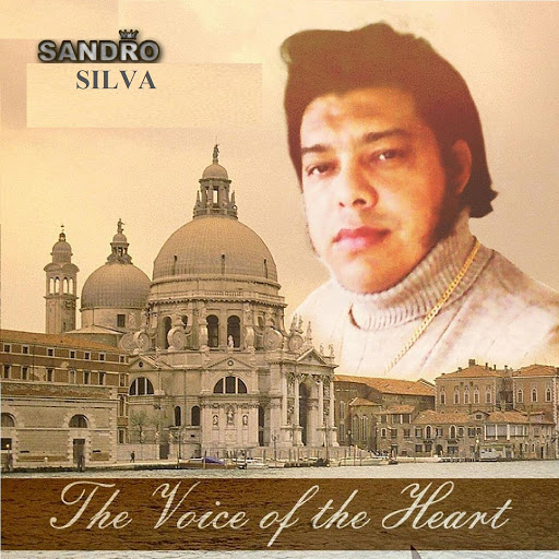 Sandro Silva альбом The Voice Of The Heant