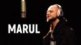 Pit Bull LIVE Marul