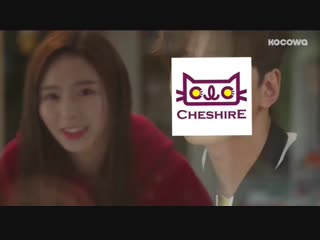 hello cheshire