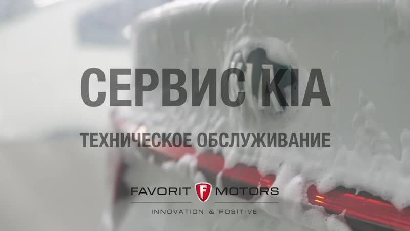 Промывка двигателя перед заменой масла - FAVORIT MOTORS