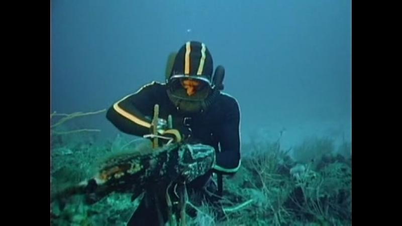 El mundo submarino de Jacques Cousteau Ep 35 El pez que se trago a Jonas