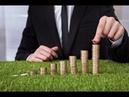 Как выбрать систему налогообложения для малого бизнеса ООО и ИП