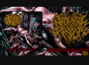 INTERNAL DEVOUR - Aborted and Slaughtered