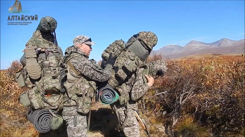 Оперативная группа Север Алтайского заповедника обзавелась своим каналом на youtube