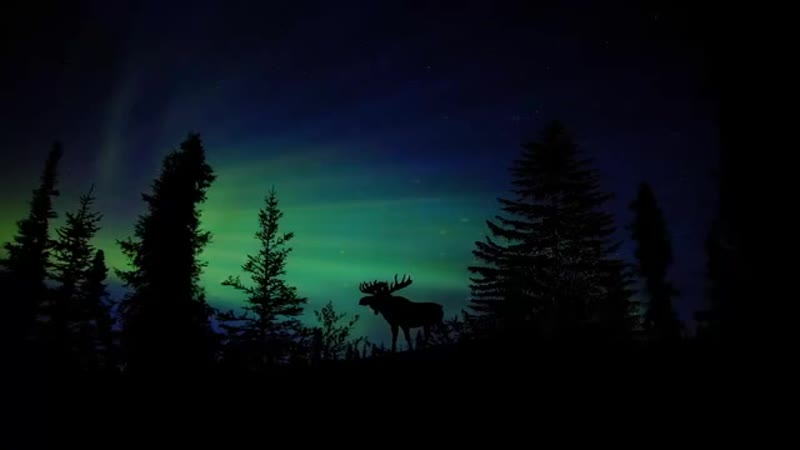 Voices Of Valley - Midgard (Original Mix)