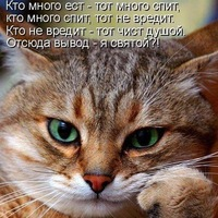 Анкета Руслан Владимирович