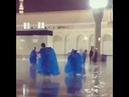 Дети играют во время дождя в мечети в Медине