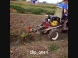 Трактор на дачу из мотоблока - Заметки строителя
