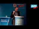 AfD Spitzen Rede