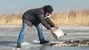 Ловля рыбы зимой на ведро Рыба клюет на ведро