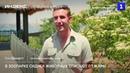 В зоопарке Сиднея животных спасают от жары