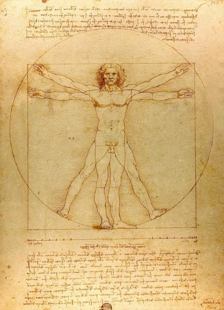 История одного шедевра. «Витрувианский человек», Леонардо да Винчи