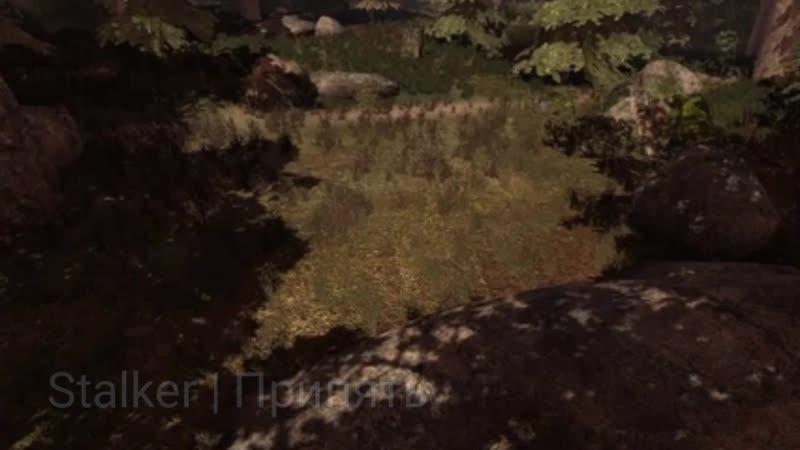Скрины и нарезки из игры STALKER | Скрины | Арты