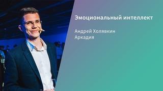 Эмоциональный интеллект / Андрей Холявкин