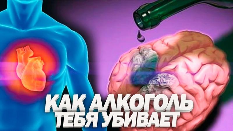 ВЛИЯНИЕ АЛКОГОЛЯ НА ОРГАНИЗМ | Почему 90% Людей Уже Алкоголики