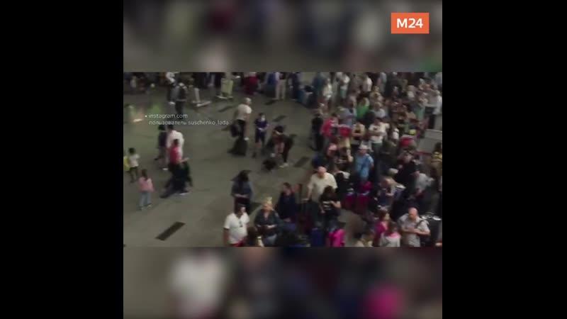 Сбой работы аэропорта Внуково — Москва 24