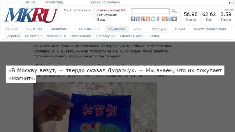 Россия в Опасности. Китайцы Уже в Доме