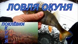 Ловля окуня со льда, подводное видео, поклёвки. CALYPSO UVS 03.