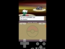 Pokemon Platinum Elite Four Bertha Rematch