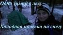 Зимняя ночевка в лесу. Одиночный поход в феврале / Winter hike / Solo Woman Bushcraft