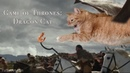 Game of Thrones: Dragon Cat's attack!