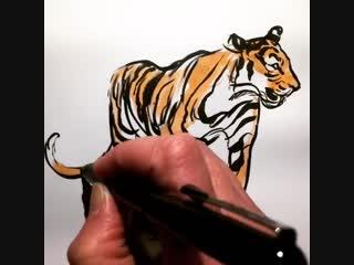 Тигр из акварели