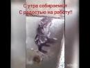 Video e0b6958fb871e24632cf7c6381051468