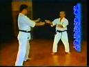 Uechi-ryu Karate-do Kenseikai. Part 02